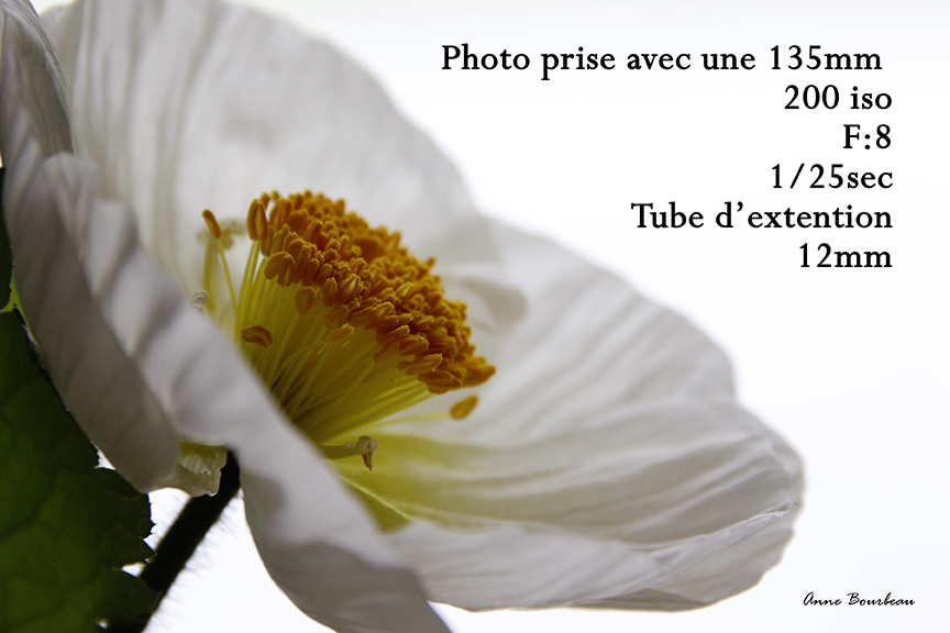 Tube d'extention 12mm